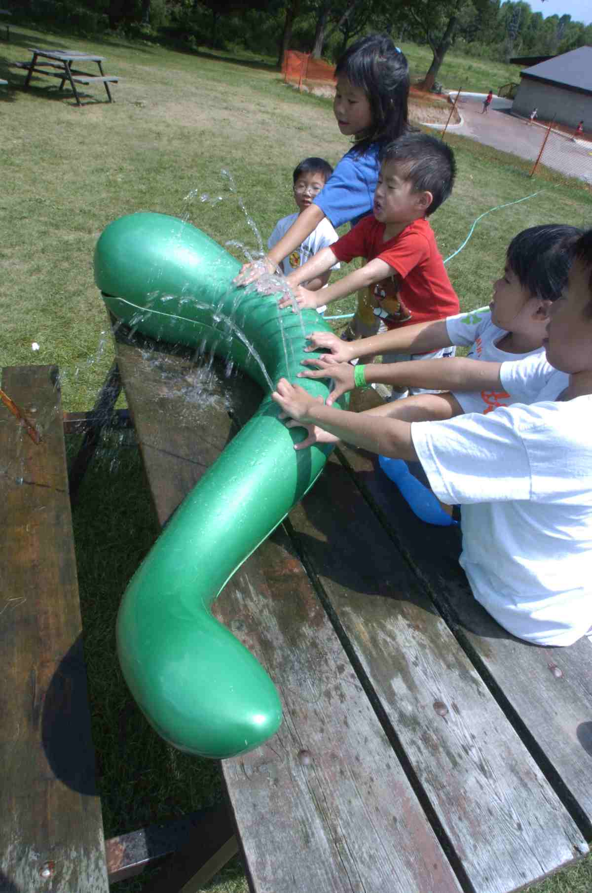 Nessie In The News Funtain Multimedia Waterplay Fountains